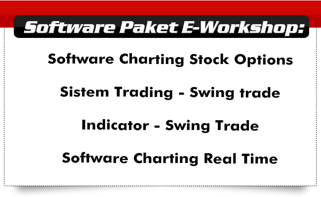 Software Paket E-workshop stock options
